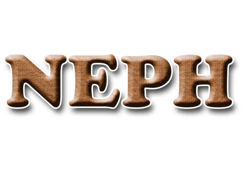 NEPH – Núcleo de Estudos e Pesquisas Históricas: Memória, História, Cultura e Cidade